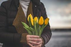 Kvinnahänder med gula tulpan stänger sig upp Royaltyfria Foton