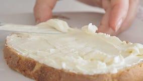 Kvinnahänder som fördelar ost på brödskiva arkivfilmer