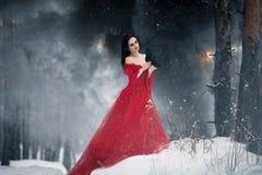 Kvinnahäxa i röd klänning och med korpsvart i hennes händer i snöig fo Arkivfoton