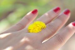 Kvinnahand med den gula blomman Arkivfoto