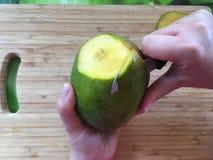 Kvinnahand som skalar en mangofrukt med kniven royaltyfri bild