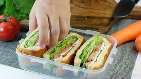 Kvinnahanden satte nya gjorda smörgåsar in i lunchasken stock video