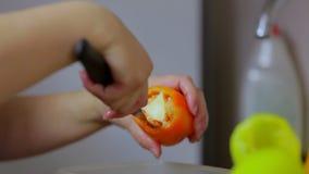 Kvinnahemmafrun klipper pepparrengöringar, sätter dem i en platta close upp arkivfilmer
