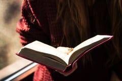 Kvinnainnehav och läsningbibel Royaltyfri Fotografi
