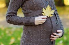 Kvinnainnehavhänder med lönnlövet på hennes gravida buk Royaltyfri Foto