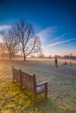 Kvinnajoggeren under en morgonvinter joggar på en parkera Royaltyfria Bilder