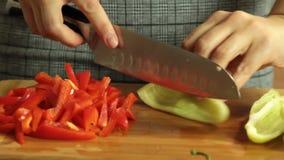 Kvinnaklippgrönsaker och laga mat sötpotatisquesadillaen stock video
