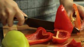 Kvinnaklippgrönsaker och laga mat sötpotatisquesadillaen lager videofilmer