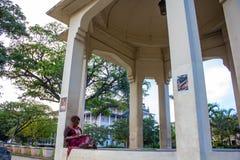 Kvinnaläsning på en parkera Fotografering för Bildbyråer