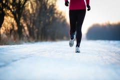 Kvinnalöparetrail som kör kall vinterskogliggande Arkivbilder