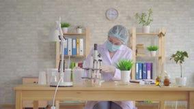 Kvinnalaboranten för en studie av växten med ett mikroskop i ett modernt laboratorium arkivfilmer