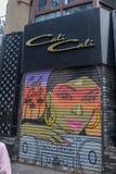 kvinnamålning på stål royaltyfria bilder