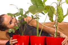 Kvinnan älskar houseplants Royaltyfri Foto