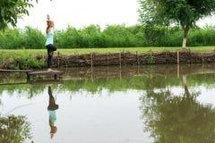 Kvinnan är det praktiserande trädet poserar yoga Arkivfoto