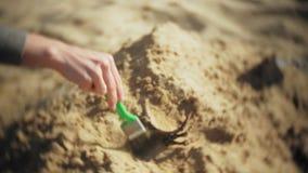 Kvinnan är förlovad, i att gräva ben i skelett- och arkeologiska hjälpmedlen de sand, lager videofilmer