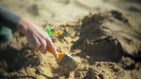 Kvinnan är förlovad, i att gräva ben i skelett- och arkeologiska hjälpmedlen de sand, stock video