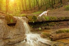 Kvinnan öva yoga i naturen, vattenfallet Den Urdhva phanurasanaen poserar royaltyfria bilder