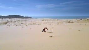 Kvinnan öva yoga på sanddyn vid havövresikt stock video