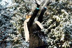 Kvinnan försvarar sig som spelar, kastar snöboll kamp Arkivbild