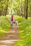 Kvinnan går med en hund Fotografering för Bildbyråer