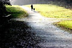 Kvinnan går med hunden Arkivbild