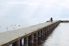 Kvinnan går på pir av Ohrid sjön som är suddig Arkivbild