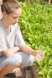 Kvinnan gödslar växter från en glass kula Arkivfoton