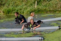 Kvinnan hjälper hennes hund över ett hinder i kanalen arkivfoto