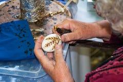 Kvinnan i folkdräkt målar det traditionella easter ägget Royaltyfria Bilder