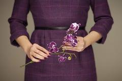 Kvinnan i händer för klänningen för ` s för violett som 50 rymmer någon orkidé, blommar Royaltyfri Fotografi