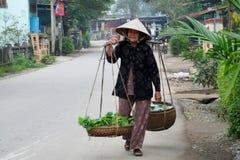 Kvinnan i Vietnam som bär traditionellt triangulärt sugrör, gömma i handflatan hattar Arkivbild