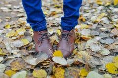 Kvinnan lägger benen på ryggen i bruna skor mot bakgrund för höstsidor Arkivfoton