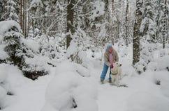 Kvinnan med en hund går på i ett vinterträ Royaltyfria Bilder