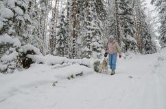 Kvinnan med en hund går på i ett vinterträ Arkivfoton
