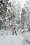 Kvinnan med en hund går på i ett vinterträ Arkivbilder