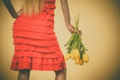 Kvinnan med gula tulpan samlar ihop, den tillbaka sikten Arkivbild