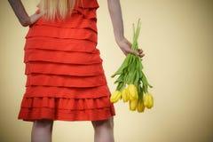 Kvinnan med gula tulpan samlar ihop, den tillbaka sikten Royaltyfri Bild