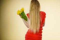 Kvinnan med gula tulpan samlar ihop, den tillbaka sikten Royaltyfria Bilder