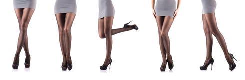 Kvinnan med högväxta ben som isoleras på vit Royaltyfria Bilder
