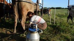 Kvinnan mjölkar maskinkon stock video