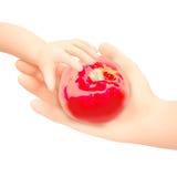 Kvinnan och behandla som ett barn handen som rymmer det röda äpplet Isolerat på en vit backg royaltyfri fotografi