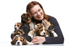 Kvinnan och den stora gruppen av valpar för en beagle Royaltyfria Foton