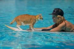 Kvinnan och en katt är i simbassäng arkivbild