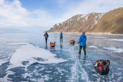 Kvinnan och en man med en pulka och en trekking pol är is av Baikal royaltyfri foto
