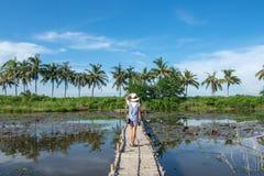 Kvinnan på bambubron i bakgrunden för lotusblommadamm och arkivbilder