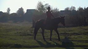 Kvinnan på en kvinnlig ryttare för häst är utomhus på en häst långsam rörelse lager videofilmer