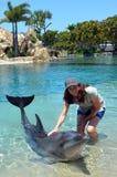 Kvinnan påverkar varandra med delfin royaltyfria foton