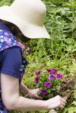 Kvinnan planterar blommor Arkivfoto