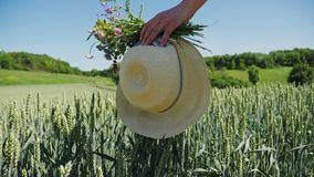 Kvinnan promenerar det gröna vetefältet Närbild av en hand arkivfilmer