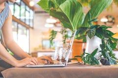 Kvinnan räcker arbete med bärbar datordatoren i kafé Fotografering för Bildbyråer